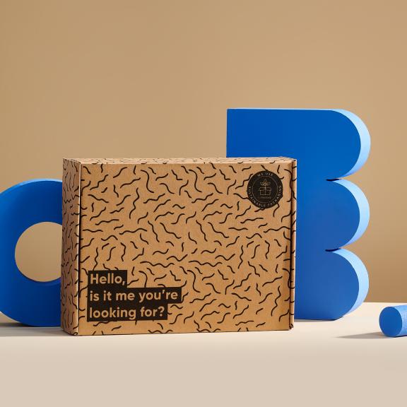 Scatola postale eco prestampata con accessori blu